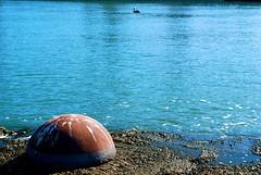 901 (Panegyrics of Granovetter) Tags: portofsanfrancisco aguavistapark