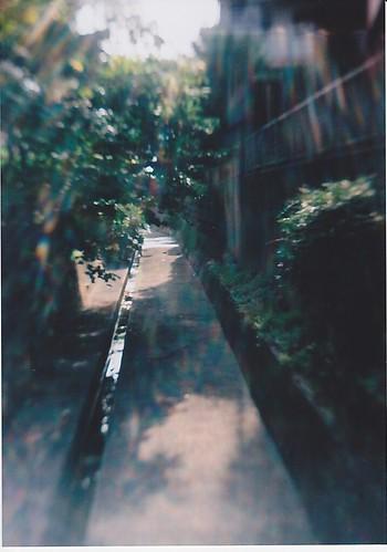 SCN_0006