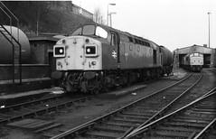 Fabulous Forty (Alastair Wood) Tags: train buxton br diesel engine rail loco engines locomotive 40 locomotives forty 40s locos englishelectric diesels class40 abcdefghijklmnopqrstuvwxyz0123456789 summer1984 d335 40135 40class classforty locomtotives oldtwothousand