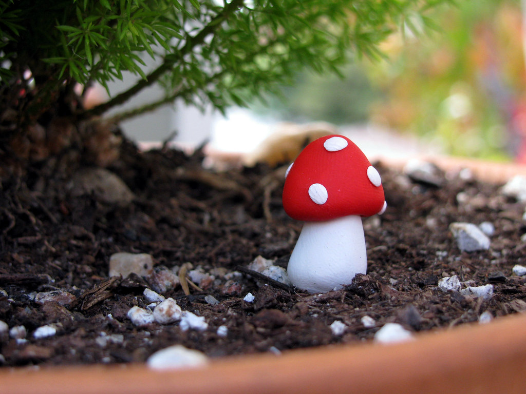 3 miniature clay mushrooms for your terrariums, indoor or outdoor plants.