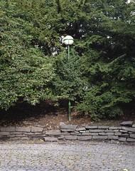 lamp (mittinatten) Tags: norge fujireala bergen pentax6x7