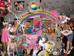 Catch Photo 1Q2 (gaymay) Tags: coyote gay light dog moon rabbit mannequin garter hat kids cat bug insect skulls drag monkey spider wings rainbow cowboy shoes venus hummingbird dress sheep boots god clown ghost helmet bat picture shell footprints horns halo dancer lips pizza boa fairy purse wig rats button million crown lightning pitchfork bombs swimsuit waldo cockroach gumby roadrunner handprints tierra photos slice ball ball 10 pizza carmen miranda disco chain