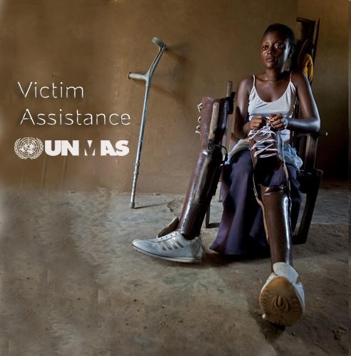 Victim Assistance, por: e - mine
