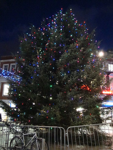 the Warrington Christmas tree