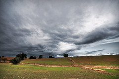 Autumn // Otoño (davic) Tags: sky cloud david clouds landscape countryside country sigma paisaje cielo nubes land campo 1020mm 1020 nube cornejo davic sigma1020mm brunete sigma1020 tff1 davidcornejo
