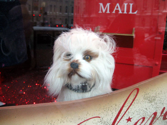 Macy's - Window 1 - Dog (Click to enlarge)