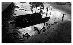 Esperando el colectivo (Carolina Tarre) Tags: city santafe blancoynegro rain monocromo blackwhite lluvia ciudad reflejo canoneos450d canonxsi