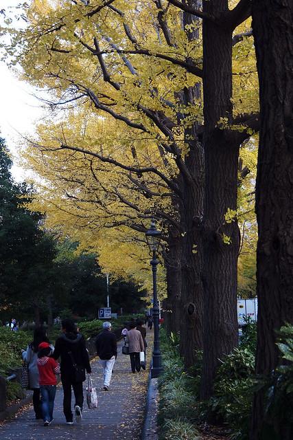 20101127_153126_横浜_山下公園