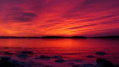 Afterglow above the frozen sea (Lauttasaari, Helsinki, 20170212) (RainoL) Tags: 2017 201702 20170212 balticsea bluehour drumsö february fin finland geo:lat=6015062048 geo:lon=2486891593 geotagged helsingfors helsinki hevosenkenkälahti hästskoviken ice lauttasaari nyland sea sunset tiiraluoto tirklacken twilight uusimaa sun