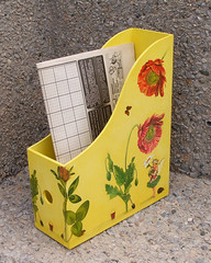 Magazine storage box