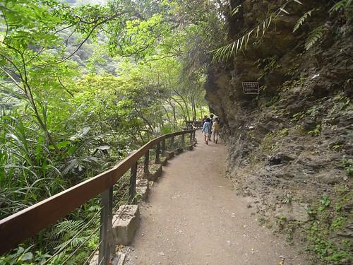 你拍攝的 11穿越峽谷後步道景色。