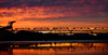 We Became What We Wanted to Be (Thomas Hawk) Tags: california bridge sunset usa america oakland unitedstates 10 unitedstatesofamerica baybridge eastbay middleharborpark fav10 middleharborshorelinepark gettyartistpicksoct09