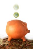 Piggy Bank (Marc Garrido i Puig/Stock.Xchng Photos)