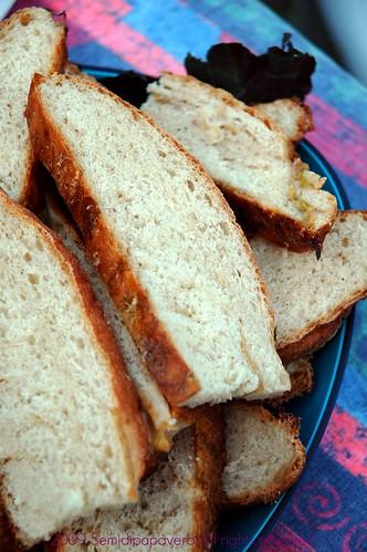 Pane ai fichi tagliato