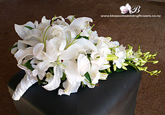 lily-orchid-cascade (Blossom Wedding Flowers) Tags: pink white singapore lily orchids stargazer bridesmaids lilies casablanca lillies bouquet bridal oriental posies bouquets cascading trailing