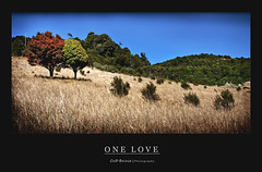 One Love (Cass n Dan) Tags: morning trees sky plants brown sun mountain holiday colour tree green love nature grass sunshine landscape twins nikon hug scenery natural touch scenic australia explore valley shrubs hideaway d90 mywinners nikond90 cassndan