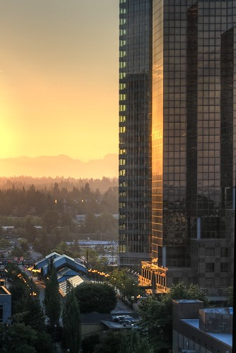Bellevue Dawn