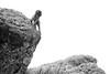 20090901-IMG_1465 (Robin100) Tags: africa animal mammal baboon ethiopia primate baboons gelada geladababoon guassa guassaplateau