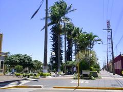 Echapora Nilceia Gazzola nilgazzola Dez 2005 (12) (nilgazzola) Tags: de se foto os palmeiras que viajando ou com ao olha mundo minha tirada maquina echaporã coqueiros foram nilgazzola