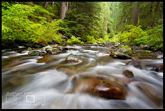 The Sol Duc Wade - Olympic National Park, Washington (Adrian Klein) Tags: park summer cold fall water canon river coast washington klein kevin northwest cloudy hiking vibrant national adrian olympics peninsula gitzo solduc mcneal lowflow