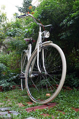 Single speed bike restored 01 (alepouda) Tags: bike bicycle vintage athens greece singlespeed restoration coasterbrake