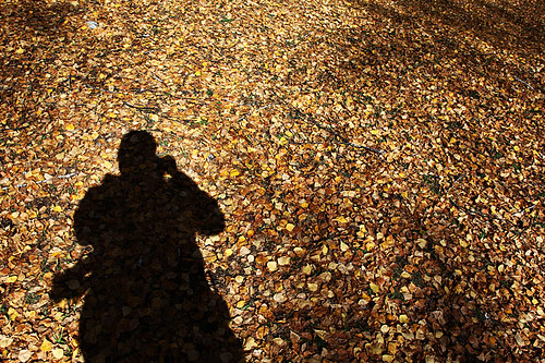 IMG_0552-w me shadow