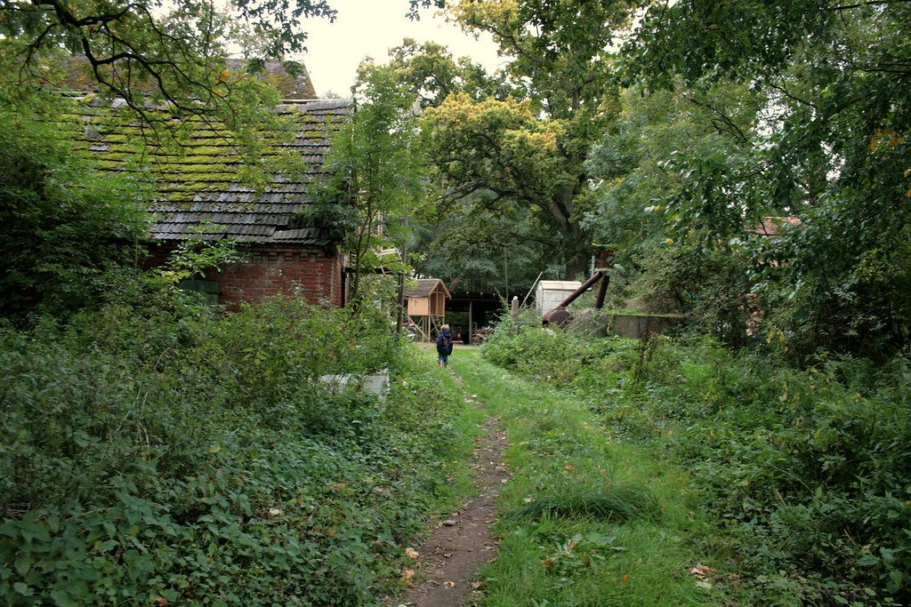 Rückweg von Wald und Weide