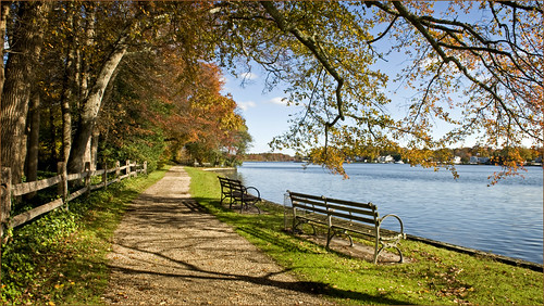 Autumn Connetquot River by Alida's Photos