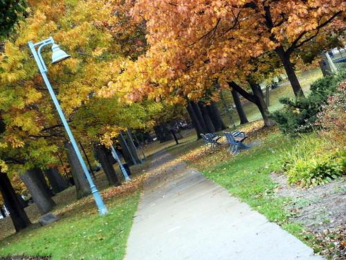 fall slant