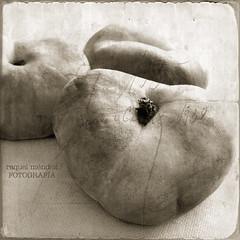 Paraguayas (Ente inexistente) Tags: stilllife macro fruta bodegn tres texturas tro duotono bo