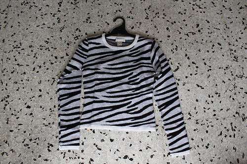 zebra xception jumper