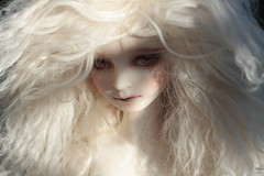 . (Holden's Dream) Tags: poppy superdollfie volks masha