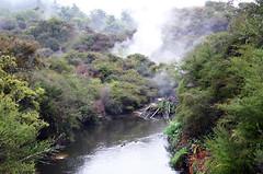 013 (thi.g) Tags: newzealand fog river rotorua thig thilogierschner