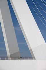 Erasmusbrug Rotterdam I (Wilco Schippers) Tags: rotterdam architectuur erasmusbrug