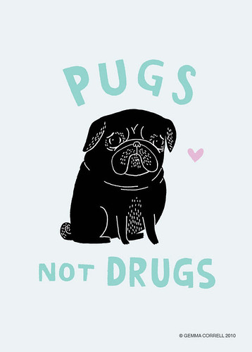 black pugs not drugs / gemma correll