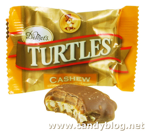 Cashew Turtles
