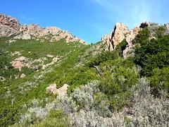 Au col derrière la pointe 761 m : suite du sentier en crête vers la crête de Cervi