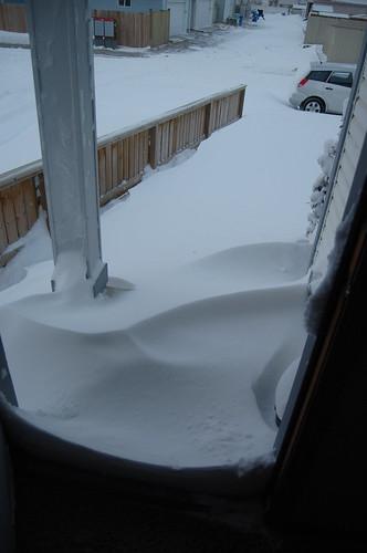 Snow Day December 2009 016