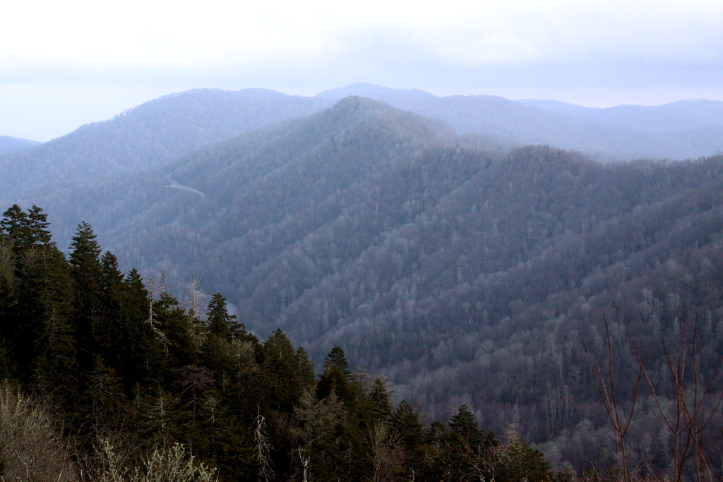 Day 348: The Smokies