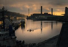 Men's Quadruple Scull. (Photography by Julia Martin) Tags: photographybyjuliamartin sunriselight portofcork ireland riverleecork corkireland industrial dockland mensquadruplescull