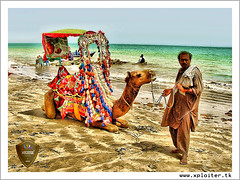 It is easier for a camel to go through the eye of a needle than for a rich man to enter into the kingdom of God :: HDR (Xploiтєя ™) Tags: world city travel blue friends pakistan light sea summer vacation sky copyright holiday black eye art love me beautiful festival photoshop geotagged fun photography idea nikon asia king ride heart you © captured master camel passion karachi hdr atif xploiter nikoncorperation