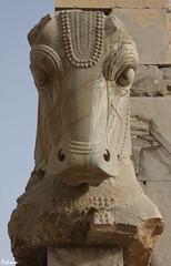 Persepolis 11- Shiraz - Iran     -  -  (Pedram Veisi) Tags: iran shiraz cyrus  persepolis achaemenid darius  fars parseh    cyrusthegreat achaemenidempire  dariusthegreat   heritagesite378