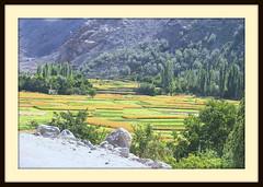 colors (TARIQ HAMEED SULEMANI) Tags: travel tourism trekking village hiking north bilal tariq valleys northernpakistan skardu abigfave maclu khaplu concordians sulemani kanday lailapeaktrek hyshy