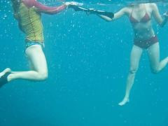 F (Matthias Viertel) Tags: blue red sea mer rot water rouge agua aqua eau wasser unter under h2o blau bleue sous celsio13