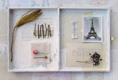 the forgotten (wild goose chase) Tags: rose pine box assemblage eiffeltower theguardian oldpostcard elderberry