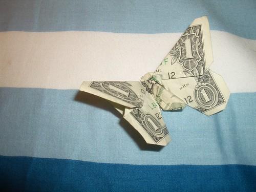 dollar butterfly