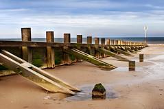 Portobello (Surely Not) Tags: sea beach scotland sand nikon edinburgh portobello d300 yourphototips thephotoproject