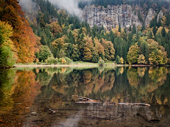 Fall Colors (andywon) Tags: autumn trees lake fall nature water colors reflections germany landscape deutschland schwarzwald blackforest feldberg badenwrttemberg feldsee explored gettyimagesgermanyq1