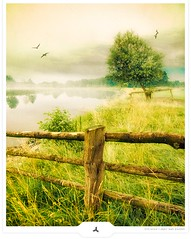 Midsummer Riverside (Gert van Duinen) Tags: tree birds misty fog fence germany landscape countryside bravo riverside digitalart landschaft ems dreamcatcher landschap dutchartist conceptualphotography landschaftsaufnahme homersiliad gertvanduinen explore20onoct182009