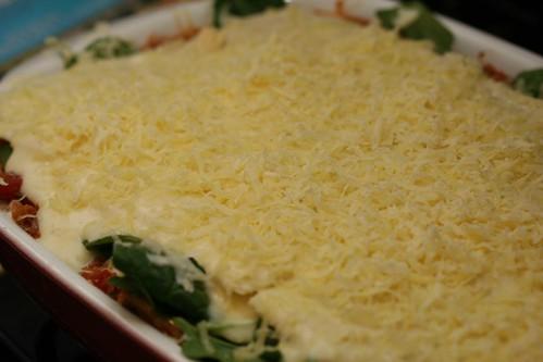 Tempeh Lasagne 10